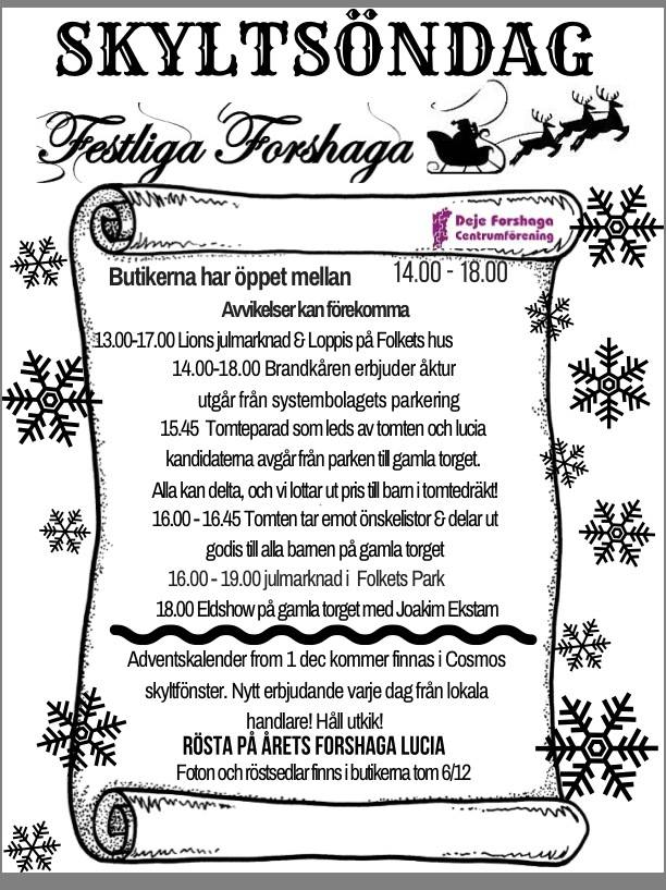 Programpunkter i Forshaga